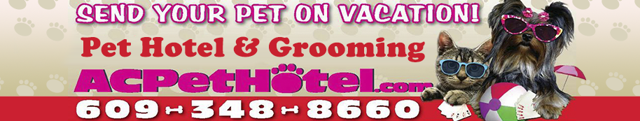 Pet Hotel and Grooming